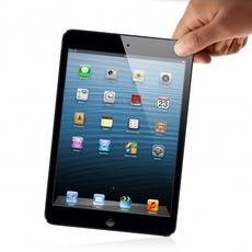 Sujetando el iPad Mini
