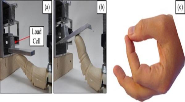Así funciona el dedo biónico