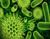 Los beneficios desconocidos de los virus en el ADN