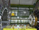 El LHC se para por un roedor que ha estado mordiendo los cables