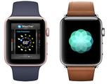 El Apple Watch se ha vendido un 70% menos este verano
