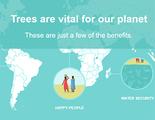 Ecosia, un buscador web cuyos beneficios favorecen al medio ambiente