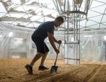 Un estudio demuestra que es posible cultivar patatas en Marte