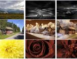 Copiar estilos de fotos será pan comido con la IA de Adobe