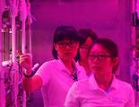 China empieza un experimento de 200 días viviendo en condiciones de otro planeta
