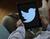 Twitter deberá indicar los anuncios políticos y quién pagó por ellos