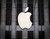 Un repaso por el mejor año fiscal de Apple