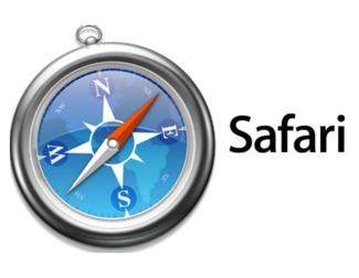 Elimina los datos de Safari en un dispositivo con iOS